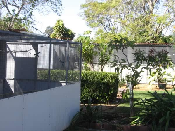 Don Crawford's Gouldian Finch and Hooded Parrot Aviaries